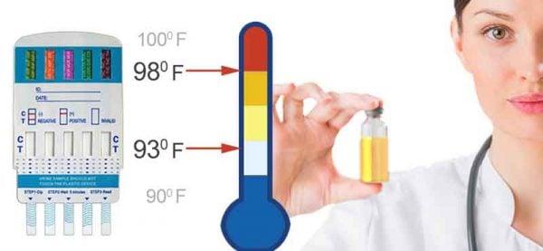 urine temperature