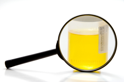 What should you not do before a urine drug test